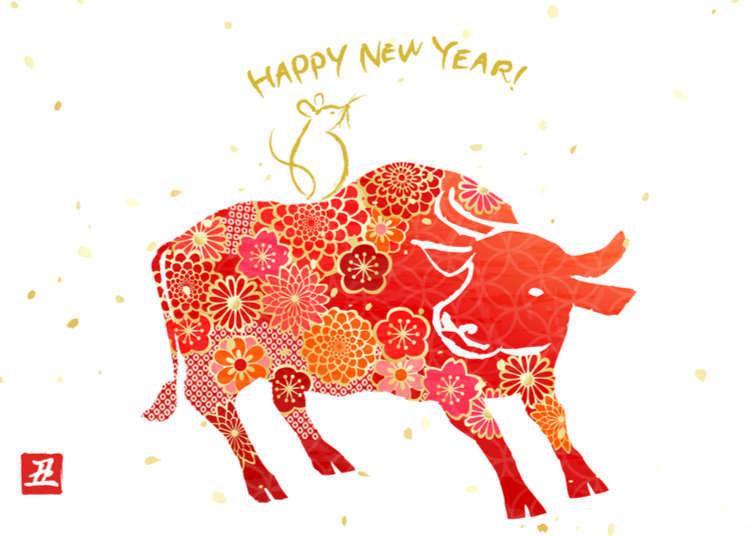 Chinese New Year of the YIN Metal OX February 12th, 2021!!!