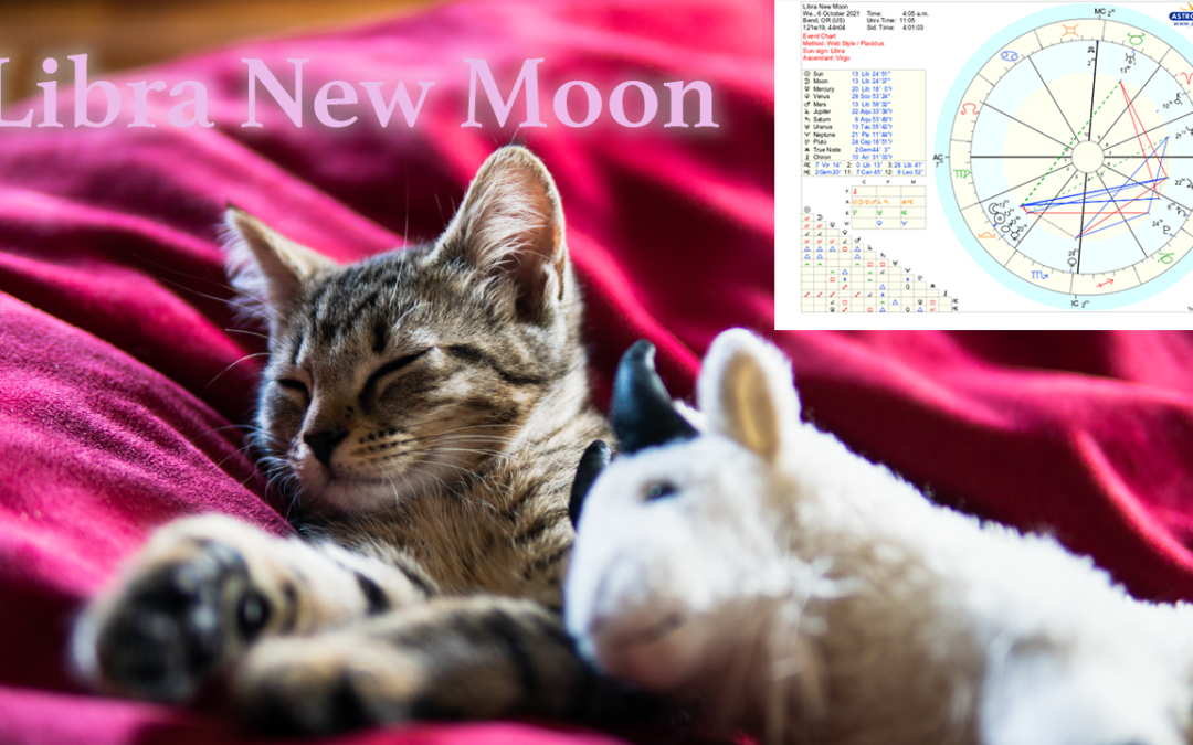 Libra New Moon `10/06/21 There's a NAP for that!